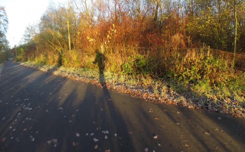 26 Kilometer // 38 Fotos